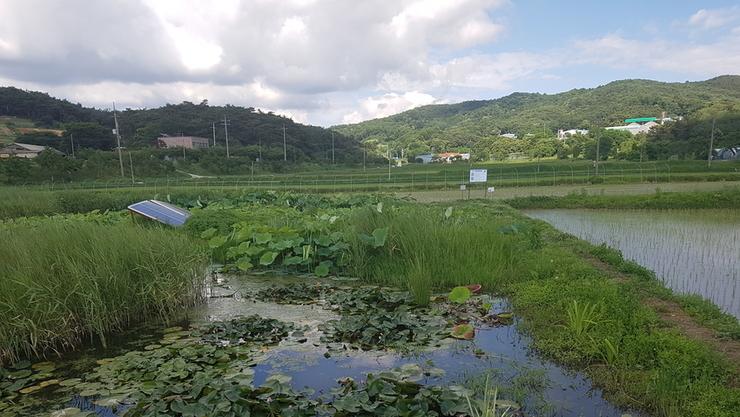 ' 농업환경자원정보관리체계 개선 시급 '